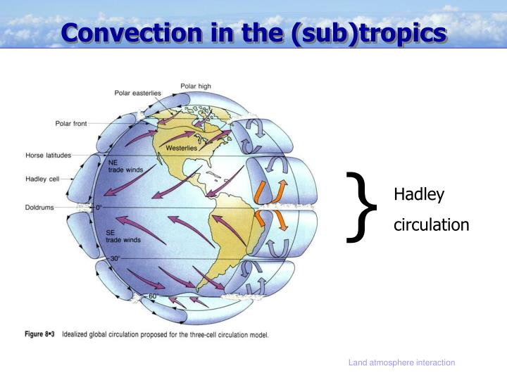 Convection in the (sub)tropics