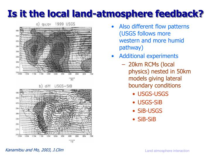 Is it the local land-atmosphere feedback?