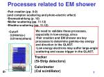 processes related to em shower