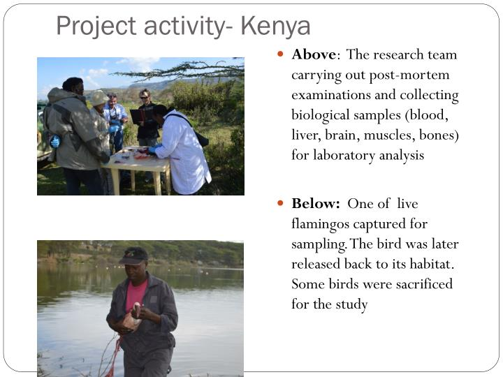 Project activity- Kenya