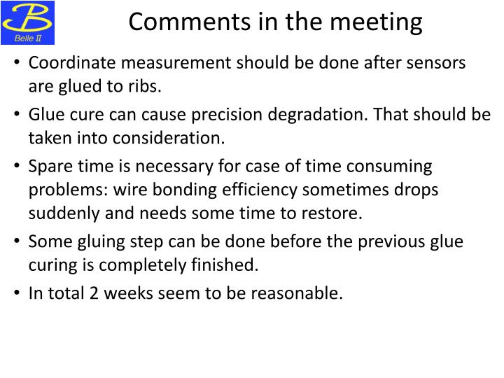 Comments in the meeting