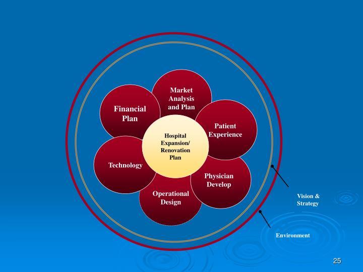 Market Analysis and Plan