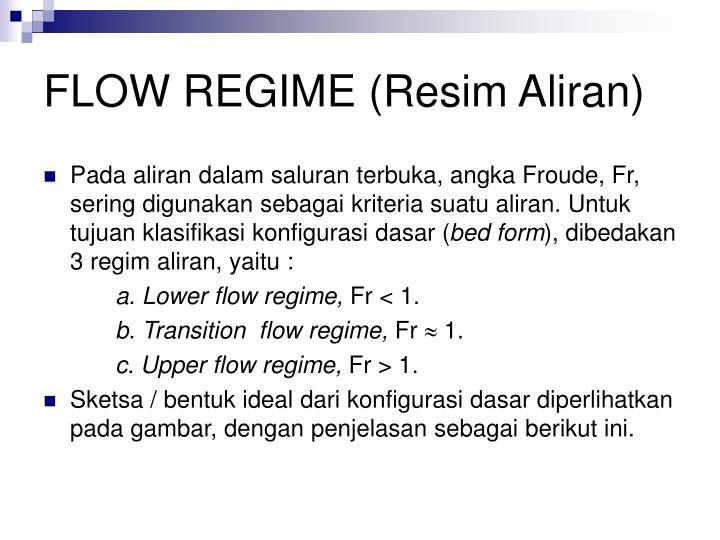 FLOW REGIME (Resim Aliran)