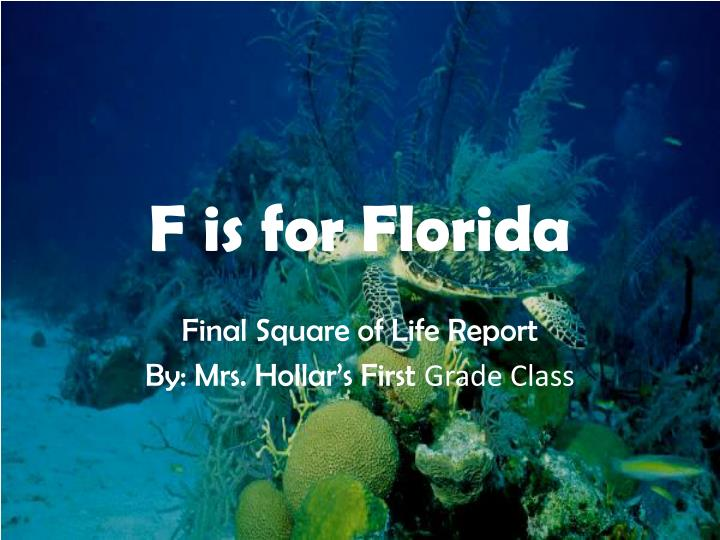 F is for florida