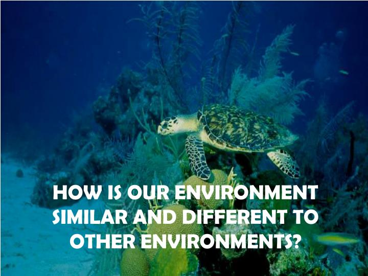 How is our environment similar and different to other environments?