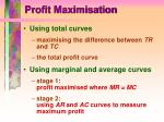 profit maximisation4
