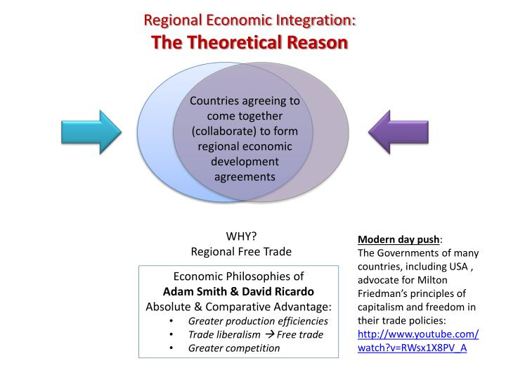 regional economic integration the theoretical reason n.