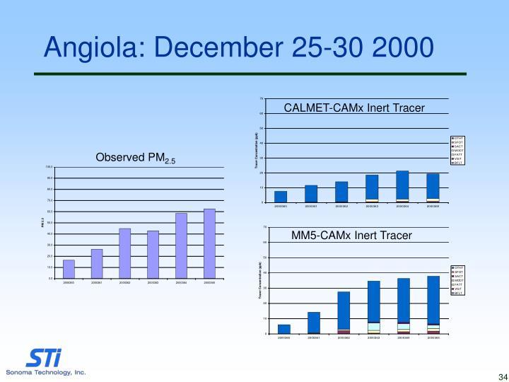 Angiola: December 25-30 2000