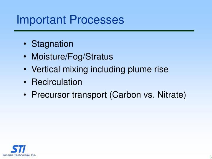 Important Processes