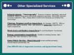 other specialized services