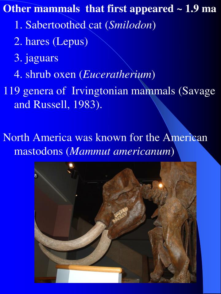 Other mammals  that first appeared ~ 1.9 ma