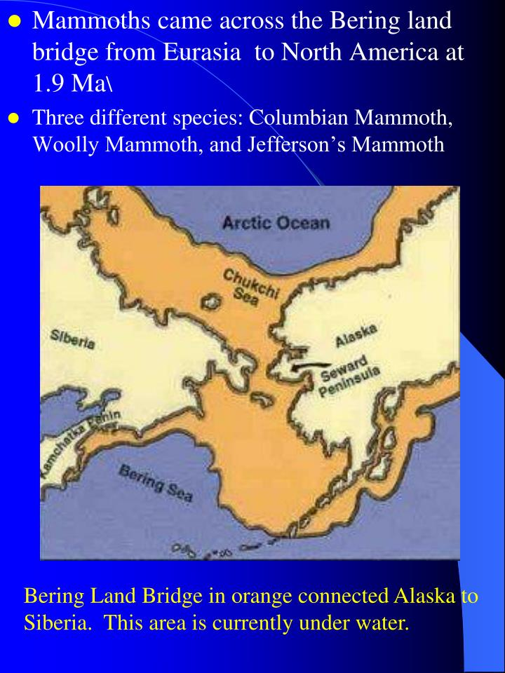 Mammoths came across the Bering land bridge from Eurasia  to North America at 1.9 Ma
