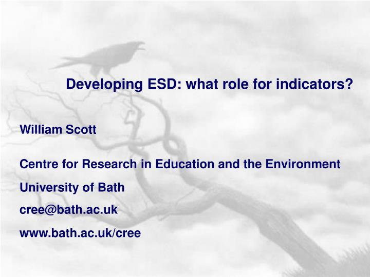 Developing ESD: what role for indicators?