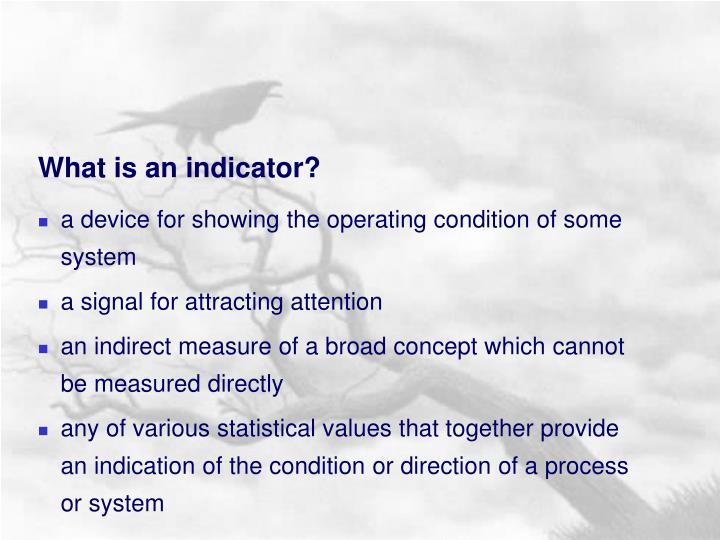 What is an indicator?