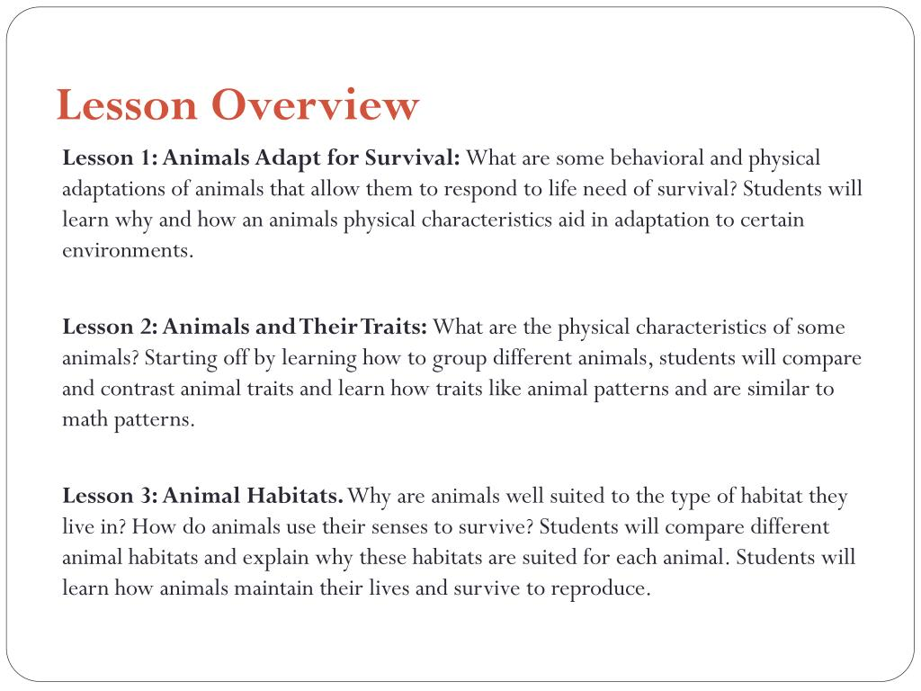 PPT - 1 st Grade MST INQUIRY UNIT Animals Diversity: How are ... Animal Traits Worksheet on animal challenges worksheets, animal actions worksheets, animal life cycle worksheets, animal activities worksheets, animal health worksheets, animal cells worksheets, days of the week worksheets, similarities and differences worksheets, animal research worksheets, addition & subtraction worksheets, animals vertebrates and invertebrates worksheets, animal family worksheets, identifying emotions worksheets, first grade animal classification worksheets, animal name worksheets, animal color worksheets, simple fractions worksheets, animal behavior worksheets, animal species worksheets, animal worksheets for 1st grade,