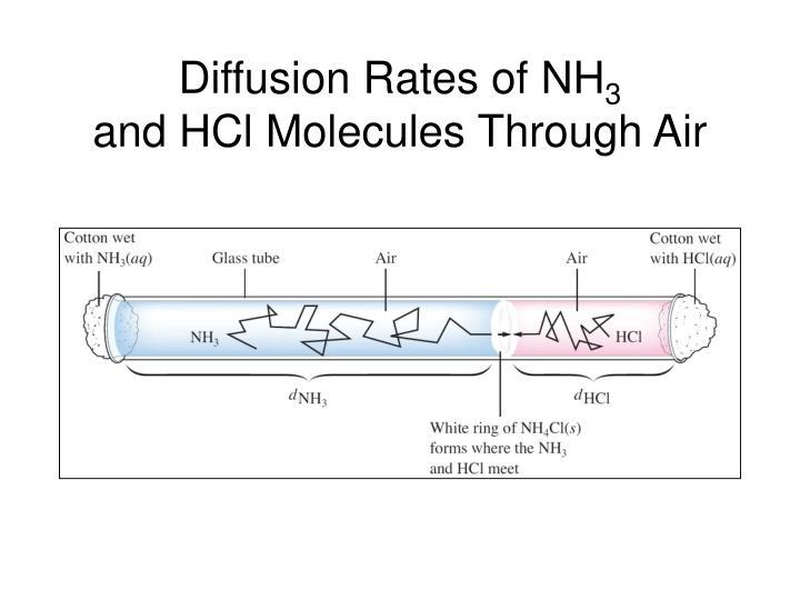 Diffusion Rates of NH