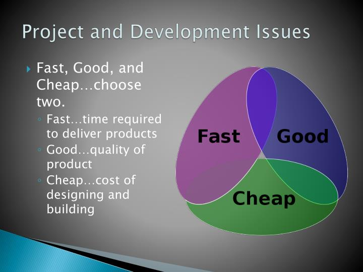 Project and Development Issues