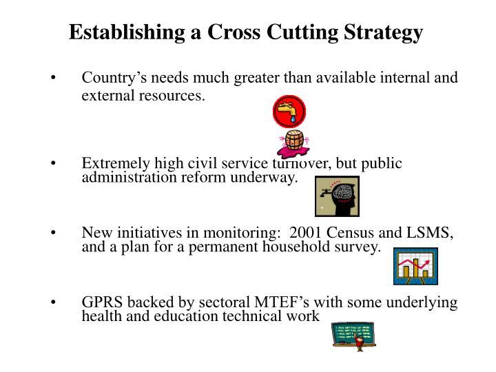 Establishing a cross cutting strategy