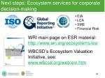 next steps ecosystem services for corporate decision making