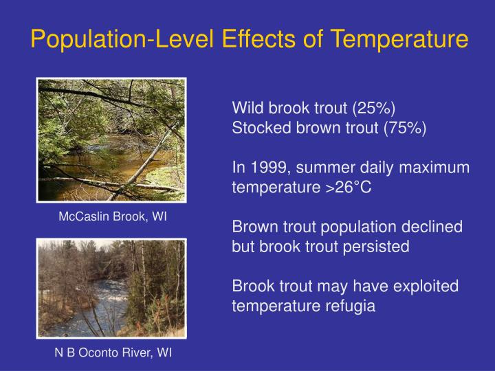 Population-Level Effects of Temperature