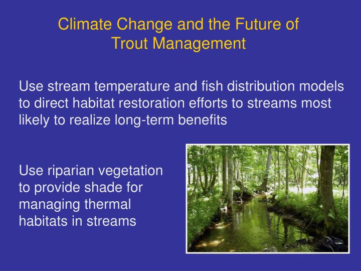 Climate Change and the Future of