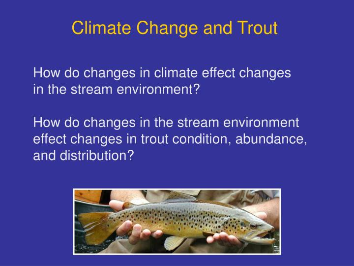 Climate Change and Trout