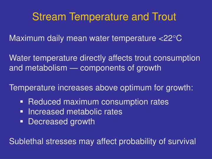 Stream Temperature and Trout