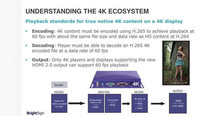 Understanding the 4k ecosystem