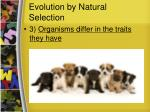 evolution by natural selection2