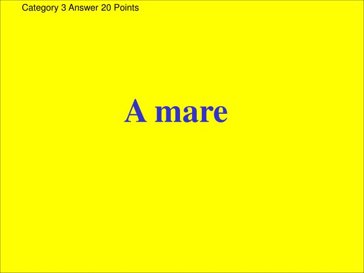 Category 3 Answer 20 Points