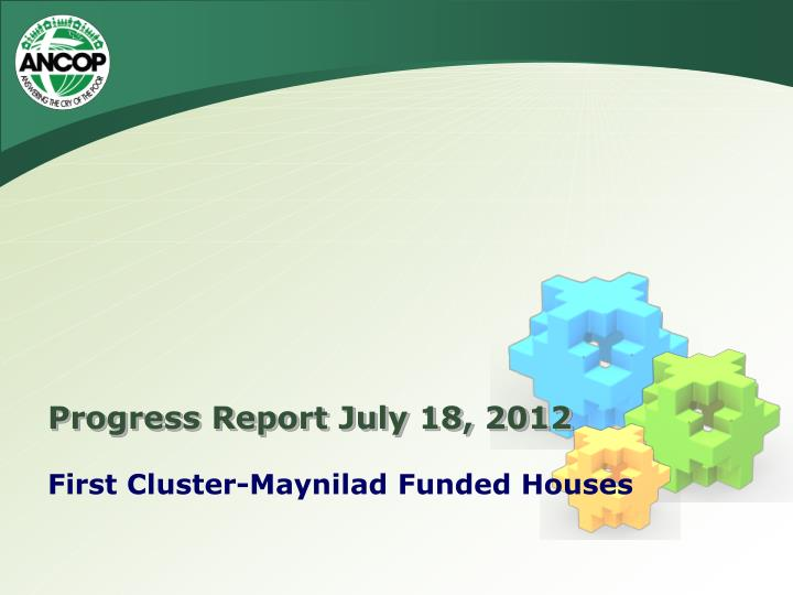 Progress Report July 18, 2012