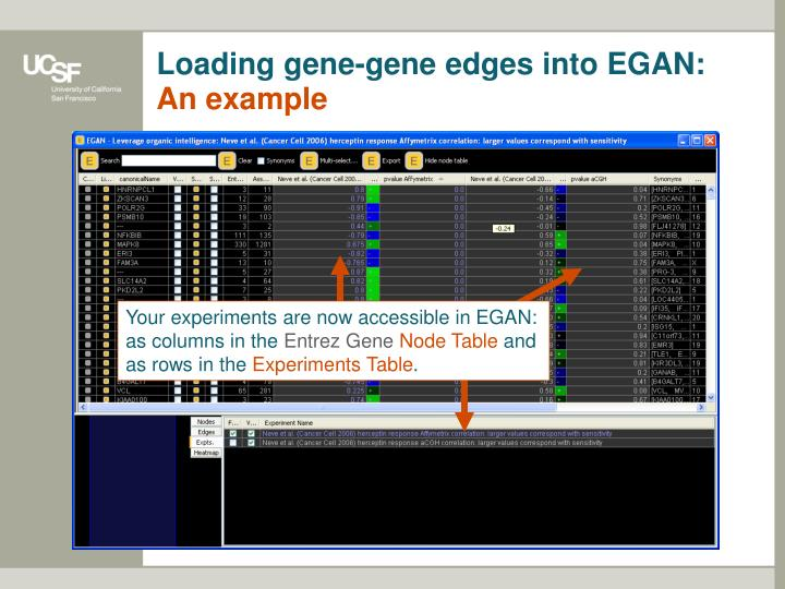Loading gene-gene edges into EGAN: