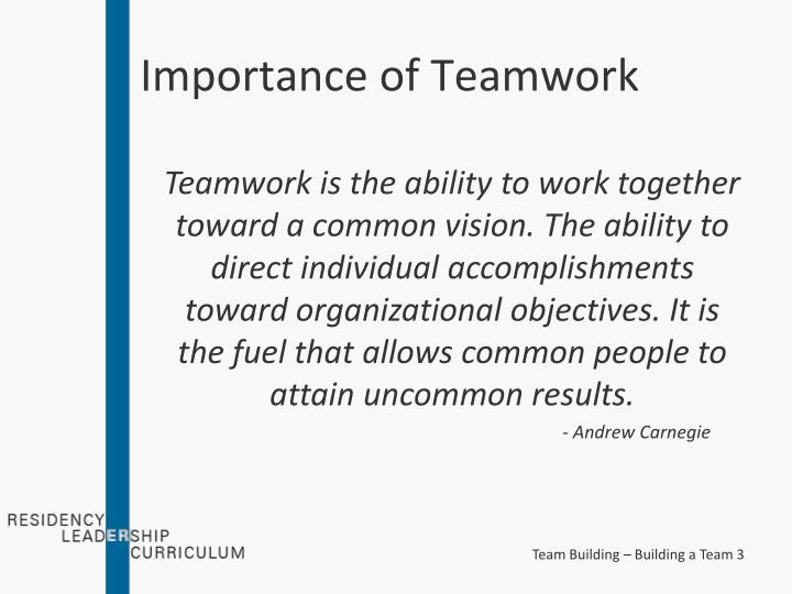 importance of teamwork in an organization pdf