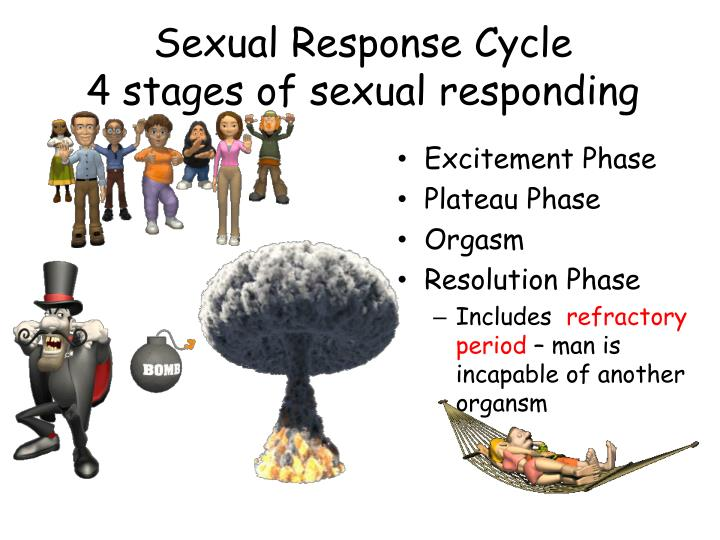 sexual response cycle similarities differences Measurement of sexual responses models of sexual response men's sexual response cycle women's sexual response cycle controversies about orgasm penis size: does it matter powerpoint slideshow about 'similarities and differences in our sexual responses' - magar.