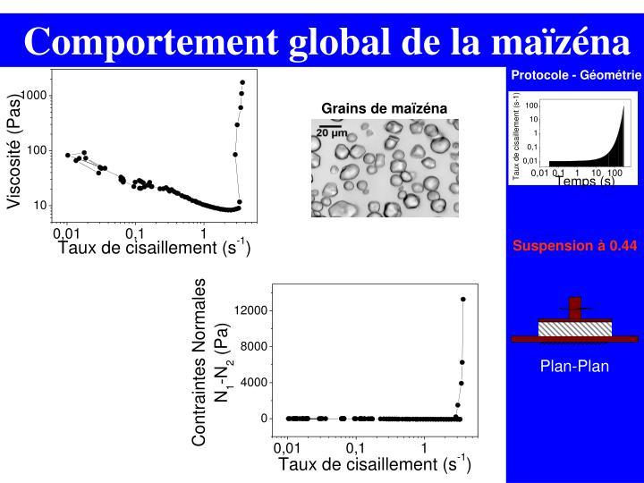 Comportement global de la maïzéna