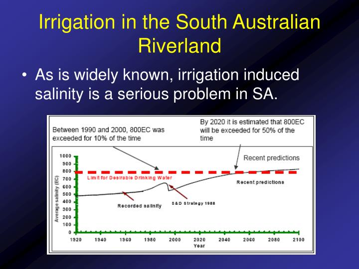 Irrigation in the south australian riverland