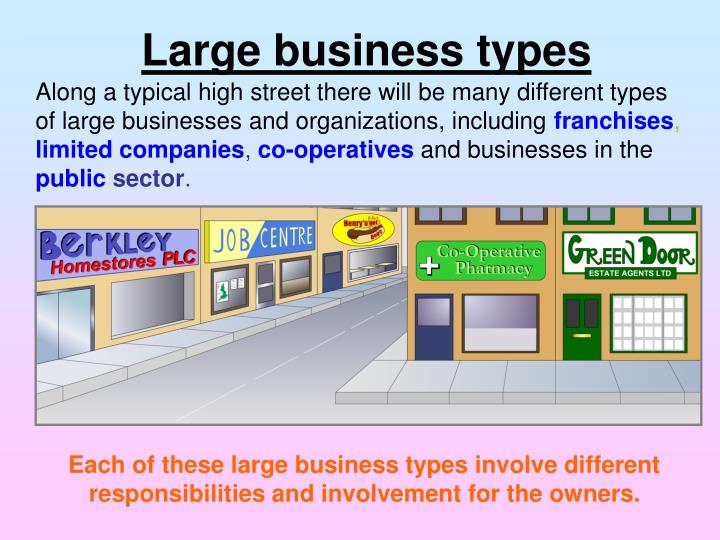 Large business types