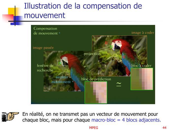 Illustration de la compensation de mouvement