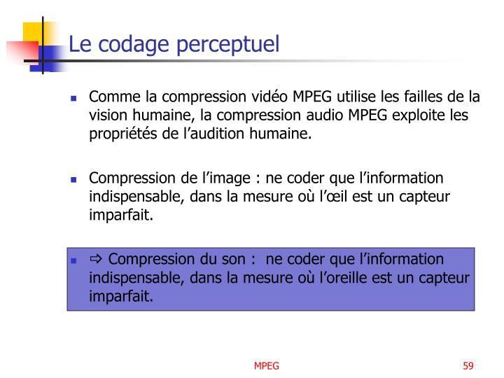 Le codage perceptuel