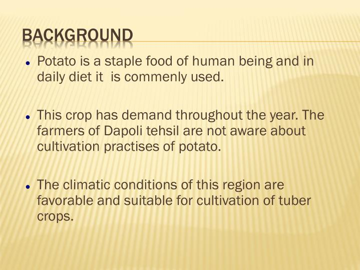 Potato is a staple food of human being and in daily diet it  is commenly used.