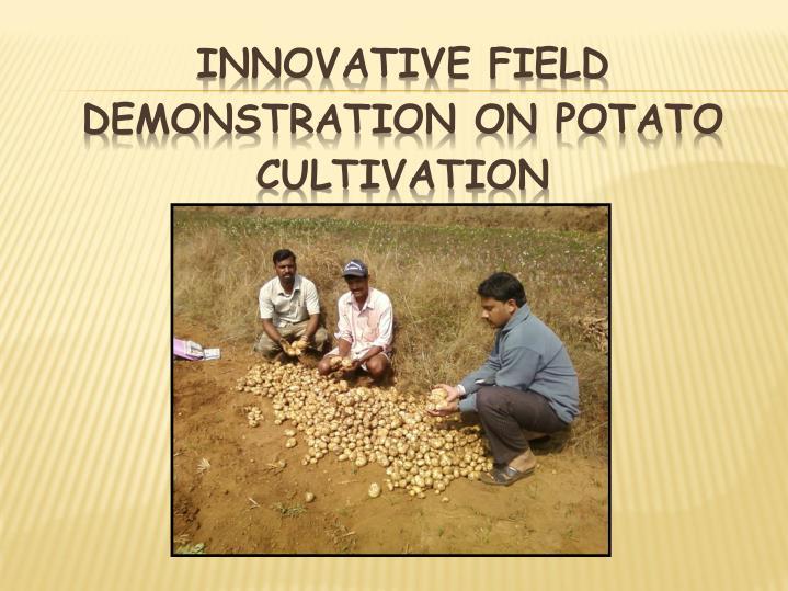 Innovative field demonstration on potato cultivation