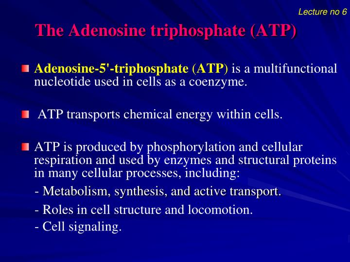 The adenosine triphosphate atp1