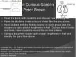 the curious garden by peter brown1