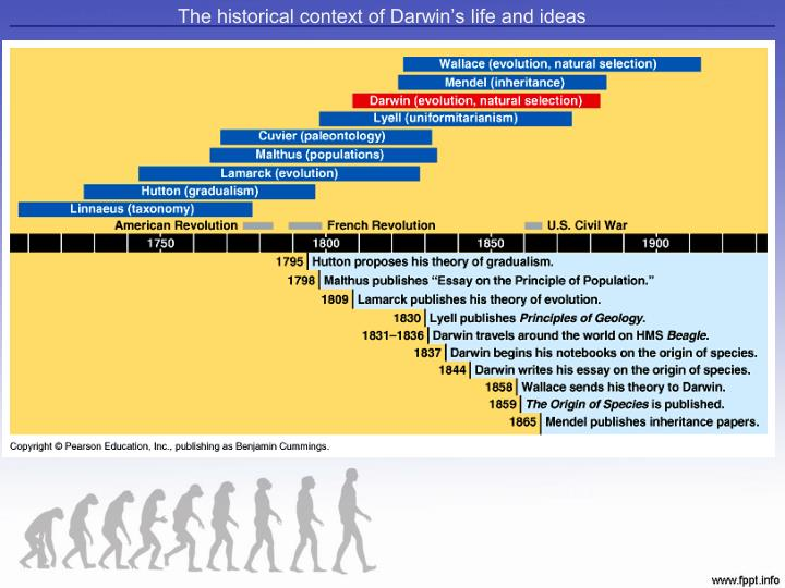 an essay on evolution and darwinim Evolution and creationism saved essays the theory of evolution by natural selection proposed by charles darwin is one of the more prevalent.