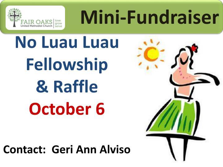 Mini-Fundraiser