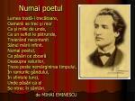 numai poetul