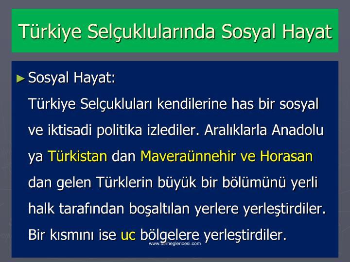 Türkiye Selçuklularında Sosyal Hayat
