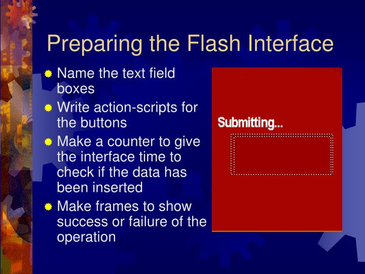 Preparing the Flash Interface