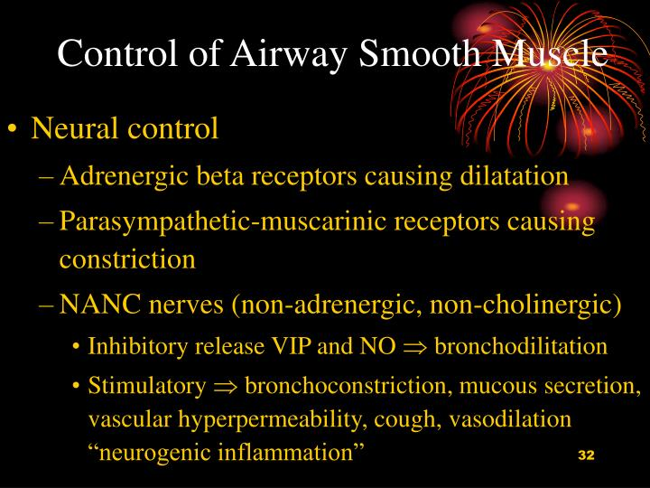 Control of Airway Smooth Muscle