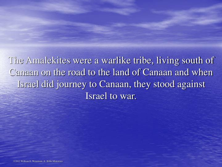 The Amalekites were a warlike tribe, living south of Canaan on the road to the land of Canaan and when Israel did journey to Canaan, they stood against Israel to war.